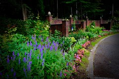 Landscape steeped in bright colors (Kazuo Ishikawa2014) Tags: world road park morning light sun flower color bird love beautiful japan garden hope cool wind time walk dream run sound rest