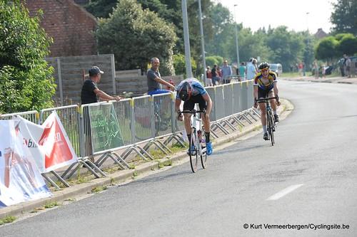 Geel Oosterlo  (336)