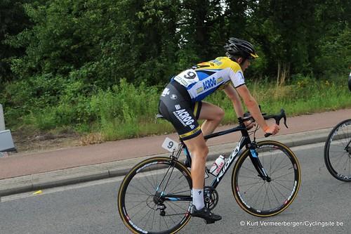 Geel Oosterlo  (271)