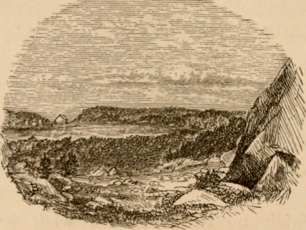 """Image from page 97 of """"Pigeon Cove and vicinity"""" (1873)"""