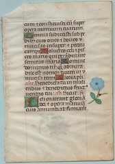 BOOK OF HOURS LEAF Ref 387 recto (RMGYMss.) Tags: medieval illuminated bruges manuscript ghent bookofhours illuminatedmanuscript matins medievalmanuscript hoursofthevirgin ghantbruges