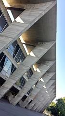 Museu de Arte Moderna: MAM! (Julio Pinon) Tags: brazil art arquitetura brasil riodejaneiro museum architecture museu arte brazilian tva whitenight happyvalentines encuentros dp3 avstand whenigrowup myvalentine farligt fdt genomskinlig benchmonday facedowntuesday fencefriday brasilemimagens leicammonochrom northplatterealestate dp3merrill whitenightmelbourne whitenightmelb