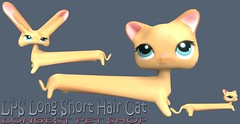 The World S Most Recently Posted Photos Of Cat And Lps