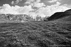 DSC_0368 (www.figedansletemps.com) Tags: lake grave fleurs montagne de la soleil noir plateau altitude coucher lac glacier grandes moutain lever oisans ecrins besse sommet meije bivouac rousses emparis