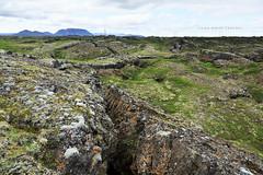 Iceland (john white photos) Tags: iceland earthquake europe earth soil join volcanic tectonicplates myvatn