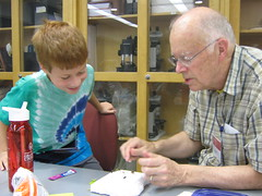 Observing insects (Wisconsin Alumni) Tags: wisconsin university madison grandparents alumni entomology