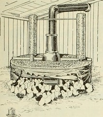 "Image from page 12 of ""The Farm-poultry"" (1915)"