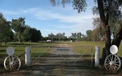 . Eurowie Aggregation, West Wyalong NSW