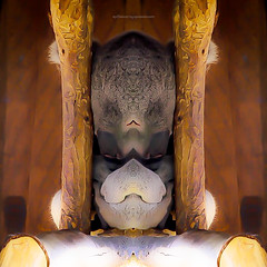 c a g e d h e a t (epiclectic) Tags: reflection animal photoshop mirror design graphic wildlife humor perspective manipulation images symmetry reflect symmetrical mutant twisted enhancement epiclecticcom epiflection epiflectionbyepiclecticcom