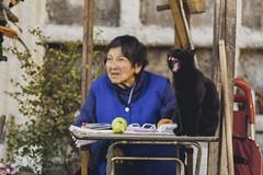 Con la boca abierta (Ricardo.M.P) Tags: old cat gato oldwoman bostezar