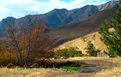 Waha Two Canyons Loop (Doug Goodenough) Tags: waha waphillia china creek bicycle bike ride fatbike fat august aug 2014 summer 14 dirt gravel climb steep drg53114 drg53114p drg53114pwhapchina drg531