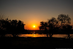 Chobe sunset (Grenouille O_O) Tags: africa sunset river rivire botswana namibia chobe fleuve afrique namibie couchedesoleil