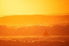 Yellow-Orange-Man at Maroubra (alexkess) Tags: man beach sunrise photography surf waves bra sydney australia surfing nsw alexander sutherland maroubra gms alexkess kesselaar goodmorningsydney