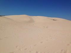 La Duna de Bolonia, Tarifa (Chodaboy) Tags: españa beach andalucía spain playa arena duna cádiz gaspar bolonia tarifa dunas chodaboy dunabolonia тарифа dunastarifa dunasbolonia