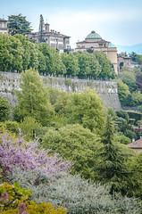 Bergamo. Italia, 2014 (EnricAndDestroy) Tags: italy italia medieval pizza bergamo lombardia castell bergamoalta dolos