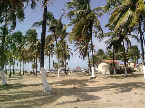 Thumbnail from Maracaípe Beach