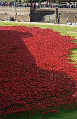 'Sea of Red' (EZTD) Tags: city england london tower foto ditch photos photographs fotos poppy poppies londres remembrance londra toweroflondon cityoflondon londinium fotograaf londonengland eztd photograaf londonimagenetwork bloodsweptlandsandseasofred
