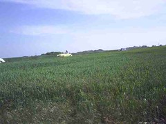 mot-2005-berny-riviere-074-le-drive-theres-more-minors-in-them-fields_800x600