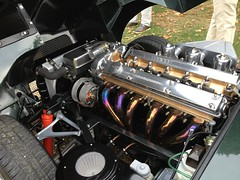1965 Jaguar E Type 4.2 with MANUAL Gearbox (mangopulp2008) Tags: uk court kent with prince september e type jaguar manual hampton micheal 42 concourse gearbox 1965 elegance 2014 of 2014ncourse