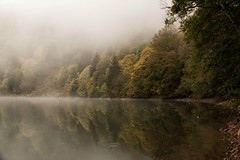 Ambiance brumeuse (Gisou68Fr) Tags: lacdesperches vosges lac lake water eau brume reflets mist fog rimbachprsmasevaux alsace france canoneos650d 68 hautrhin reflexions