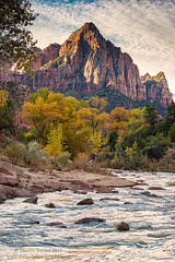 Autumn in Zion (Dwood Photography) Tags: autumn zion autumninzion national park zionnationalpark watchman mountain river water utah dwoodphotography dwoodphotographycom landscape yellow orange brown blue rock rocks
