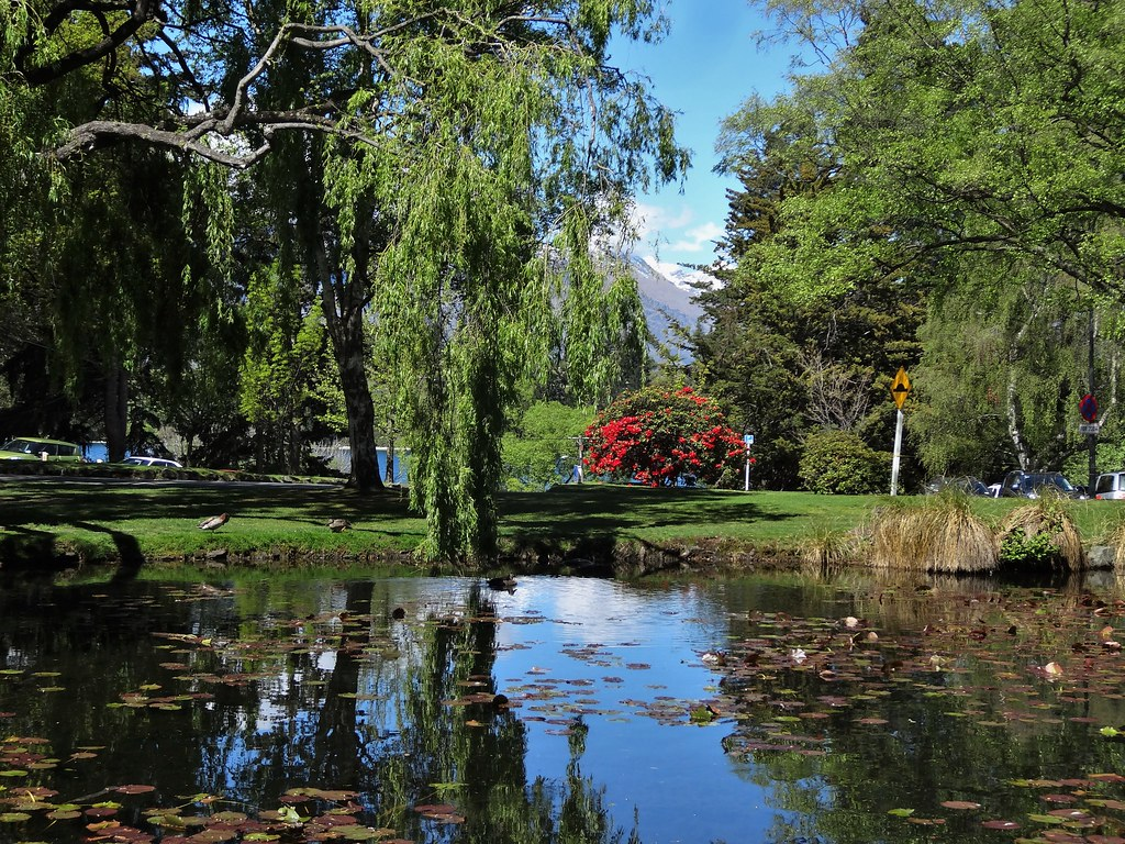 Queenstown Botanic Gardens. Lake, red rhododendron and snow on the Remarkables.