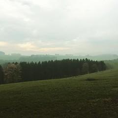 Wandern #hiking #autumn #cool #nature #wood #fields