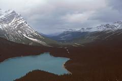 Icefield Parkway - Peyto Lake (astroaxel) Tags: kanada alberta icefield parkway national park banff peyto lake see