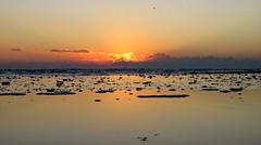 IMG_0014y (gzammarchi) Tags: italia paesaggio natura mare ravenna lidodidante alba raggio nuvola riflesso monocrome