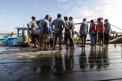 Trader's meeting (<Pirate>) Tags: sungai udang nibong tebal fishing point fish traders fresh october 23rd 1018 is stm ray masters gnd 9soft penang malaysia
