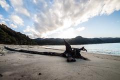 IMG_3579 (Schlueter1992) Tags: neuseeland2016urlaub abeltasmannationalpark tasman neuseeland
