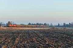 Freight train T3277 (ArtDvU) Tags: vr finnishrailways dv12 freight train t3277 kauhajoki finland southern ostrobothnia fall autumn morning sunrise canon eos 7d mark ii diesel locomotive 50mm
