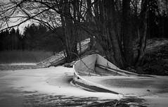 Boats on winter (Antti Tassberg) Tags: bw blackandwhite boat frozen ice j landscape lumi monochrome puu snow talvi tree vene winter espoo uusimaa finland