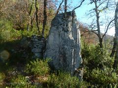 Menhir de Camboulan (AJ Mitchell) Tags: menhir megalith lot quercy obélisque python monolith valley limestone occitania oak scrub scrubland standingstones
