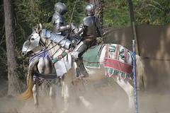 IMG_4757 (joyannmadd) Tags: horse rider joust spar duel warhorse hammoind louisiana armour outdoor game war combat midevil larenfest