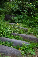Stepping stones on a path (Kent.Yousif) Tags: minatoku tōkyōto japan jp tokyo path nature stones stepping green
