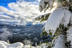 Sunny and Snowy (KPortin) Tags: mtcatherine snoqualmiepass snow sunstar clouds viewpoint summit tree