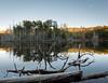 Calm on a clear lake (Alberto Vanoli) Tags: map color plantstrees reflection sunsetsunrise nature photo lakes hudsonvalley