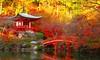 Autumn (Coto Language Academy) Tags: nihongo japanese japan jlpt katakana hiragana kanji studyjapanese funjapanese japonaise giapponese japones japanisch 日本 japaneseschool cotoacademy autumn ⠀