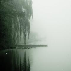 Autumn mood (Darek Drapala) Tags: mood nature panasonic panasonicg5 park lumix loight warsaw warszawa poland polska
