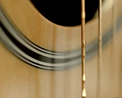 """While My Guitar Gently Weeps""......George Harrison (L E Dye) Tags: guitarstrings macromonday myguitargentlyweeps themebeatlesbeetles extentiontube20mm alberta canada d5100 droplets guitar ledye macro nikon"