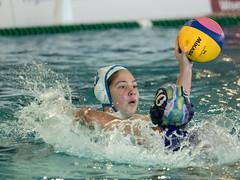 1C040143 (roel.ubels) Tags: len euro league waterpolo sport topsport utrecht uzsc 2016 krommerijn women