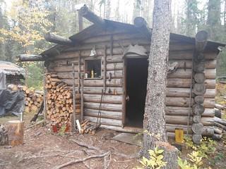 British Columbia Wolf Hunt & Big Game 7