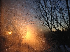 (Espykrelle) Tags: glace icy fenêtre window soleil sunrise sun montreal iphone cold tree arbre froid