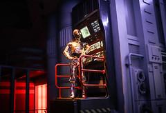 C-3PO (burns73) Tags: canon star robot wars guerre stellari c3po eos50d