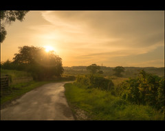 Walking in to the sunset (Steel Steve) Tags: sunset wentworth rotherham greasborough fitzwilliamestate lumixgx7
