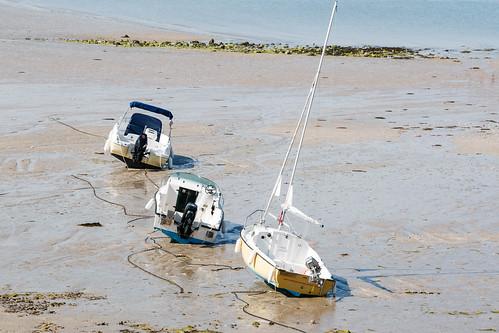 Bateaux à marée basse