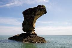 Bako Sea Stack (Christian Jena) Tags: park sea stack national sarawak malaysia borneo bako
