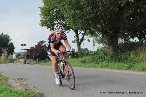 Geel Oosterlo  (209)
