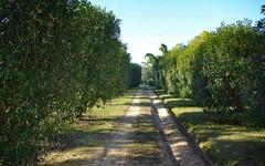 506 Half Chain Road, Koorainghat NSW